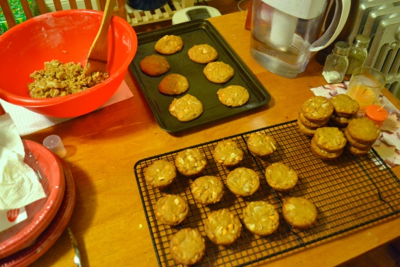 Making Coconut Cookies